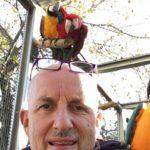 Gilberto Lazzarotto con pappagallo Ararauna